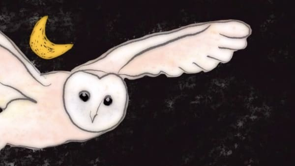 Lost, Found & Told Digital Storytelling Project - A white owl flies with wings outstretched in a black sky with a golden crescent moon. © Hannah Fox/November Club