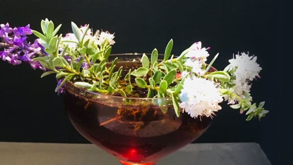 The Shrub finished cocktail (c) Imogen Cloet